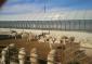 智能化养殖大棚